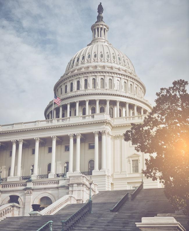 Washington D.C. Capital